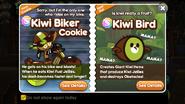 Kiwi Biker Cookie Kiwi Bird Newsletter