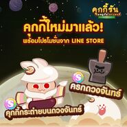 Moon Rabbit Mortar thai line newsletter