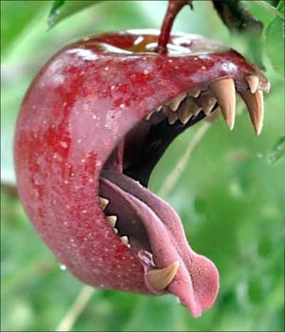 File:Killer apple.jpg