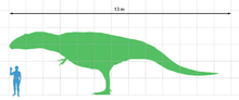File:220px-Giganotosaurus scale.png