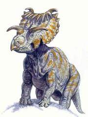 File:Kosmoceratops.jpg