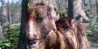 Un-Named Zuni Basin Tyrannosaur