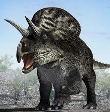 File:Zuniceratops is better!.jpg