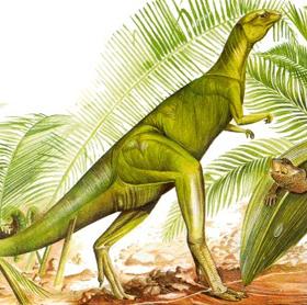 File:Fabrosaurus.jpg