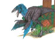 Sinornithosaurus millenii by hellraptor