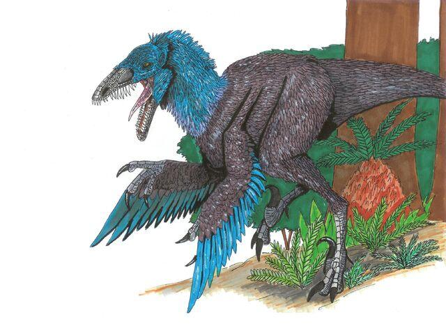 File:Sinornithosaurus millenii by hellraptor.jpg