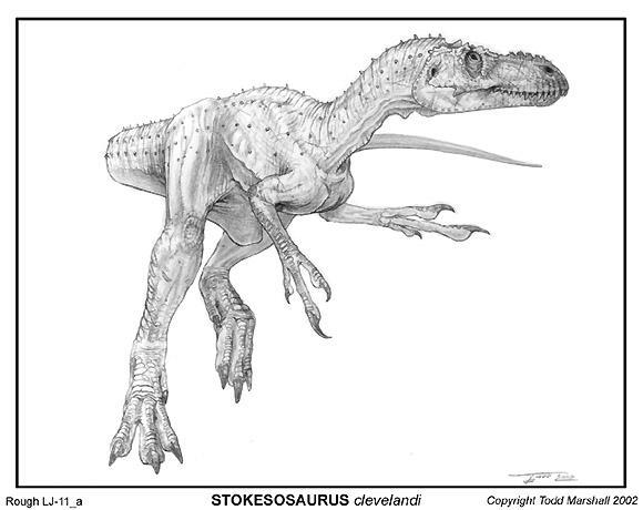 File:Tmar stokesosaurus.jpg