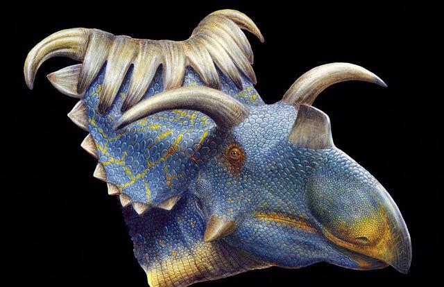 File:Kosmoceratops-horned-dino-002.jpg