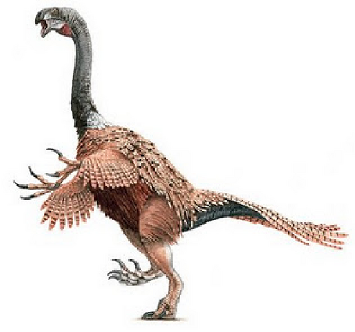 File:Nothronychus.png