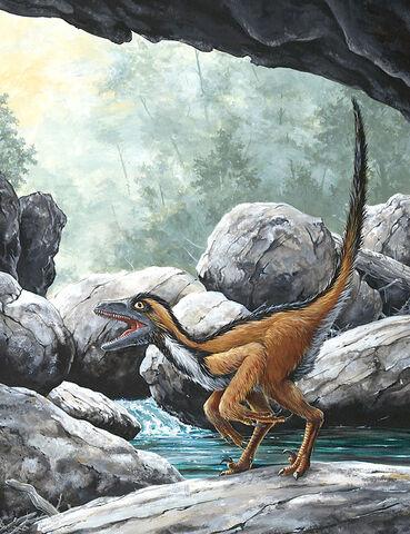 File:Sinornithosaurus2.jpg