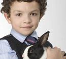 Leanne (rabbit)