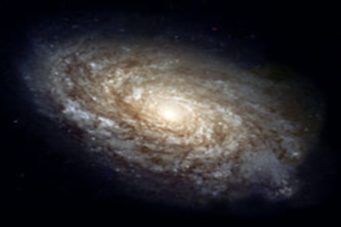 Archivo:Wikia-Visualization-Add-2,esnaturapedia.png