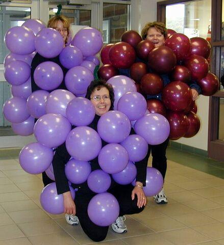 Файл:Grapes.jpg