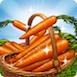 CarrotsRibbon