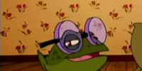 Frog with glasses