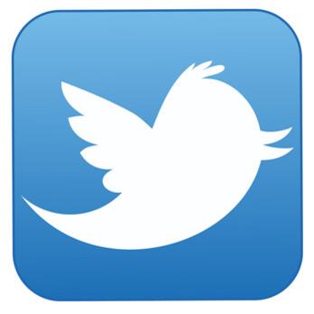 File:Icone-twitter-10685503dkhiq 1713.jpg
