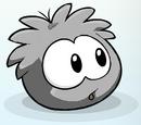 Grey Puffle