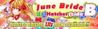 June Bride Hatcher side B Banner 2