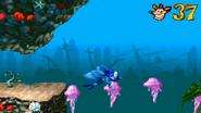 Crash as a Sea Angel