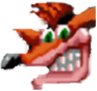 Crash Bandicoot CTR Icon