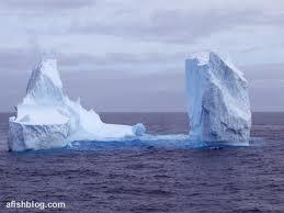 File:Ice field.jpg