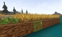 Creativerse floating crops58
