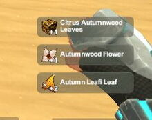 Creativerse Autumn Leafi Pet harvest3737