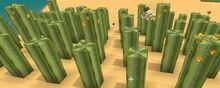 Creativerse cactus garden224