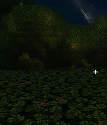 Creativerse Wildflowers glowing and not glowing