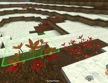 Creativerse Tundra Flowers010