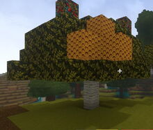 Creativerse beeswax and flowers grew later on001