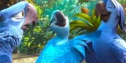 Rio 2 Blu, Jewel & Roberto1