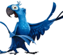 Blu Macaw