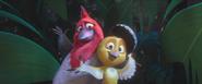 Pedro and Nico Batucada Familia