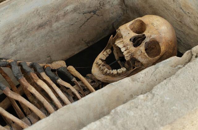 File:Arbury-skeleton.jpg