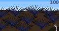 Quillblades