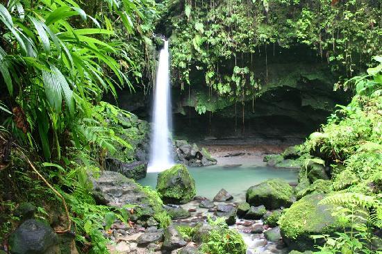 File:The-emerald-pool-dominica.jpg