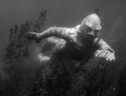 Encountering Creature Black Lagoon
