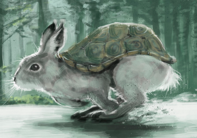 File:RABBIT TURTLE.png