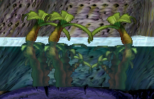 File:Waterplants.png