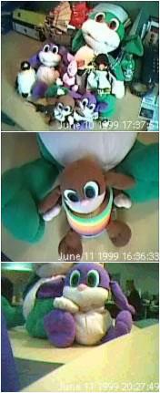 File:Webcams.jpg