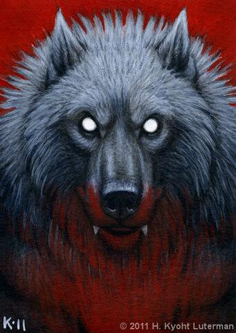 File:Werewolf portrait aceo by kyoht-d48k212.jpg