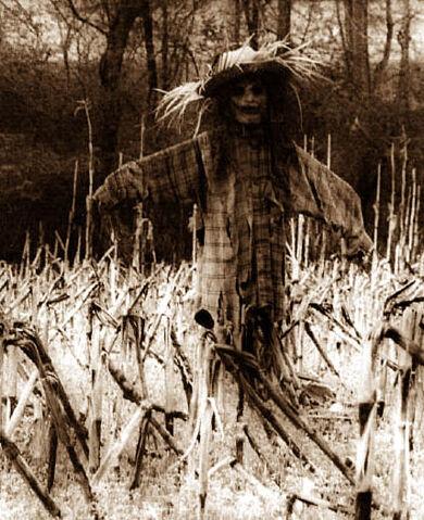 Datei:Scarecrow17.jpg