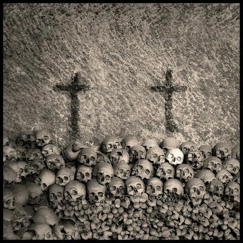 File:Augusto De Luca - Skull 2.jpg