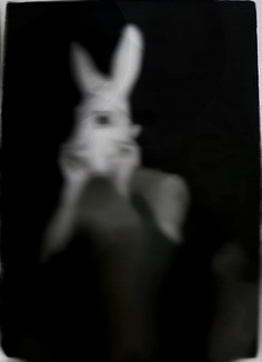 File:Funny Bunny Recovered Photo.jpg