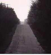 Never ending road.jpg