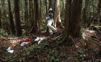 Aokigahara-Haunted-Forest-Japan