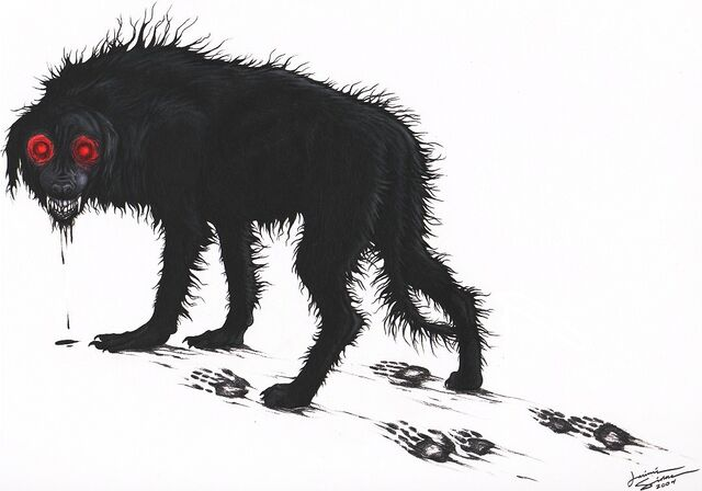 File:Blackdog.jpg