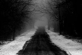 Dark path