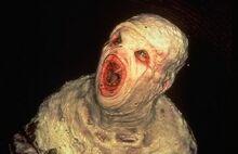 Creepysewerx-filesguy